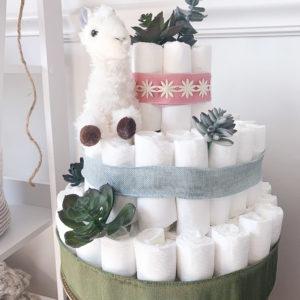 llama_succulent_baby_shower